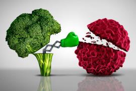 gesundes essen schützt gesund leben keine krebs