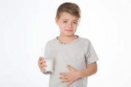 Wenn Milchprodukte auf den Magen schlagen
