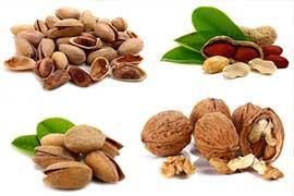 die Nüsse sind wichtig für die Ernährung